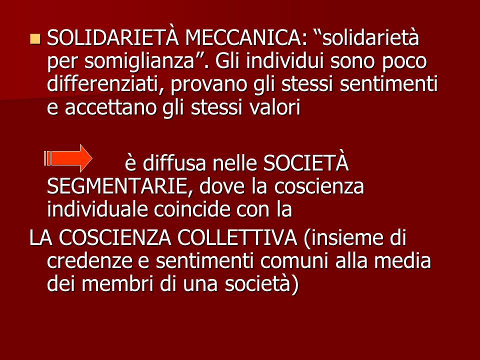 SOLIDARIETÀ MECCANICA: solidarietà per somiglianza