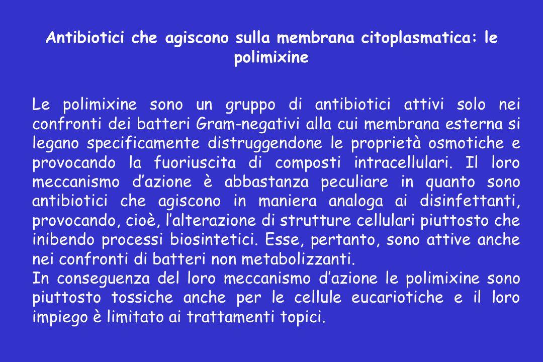 Antibiotici che agiscono sulla membrana citoplasmatica: le polimixine