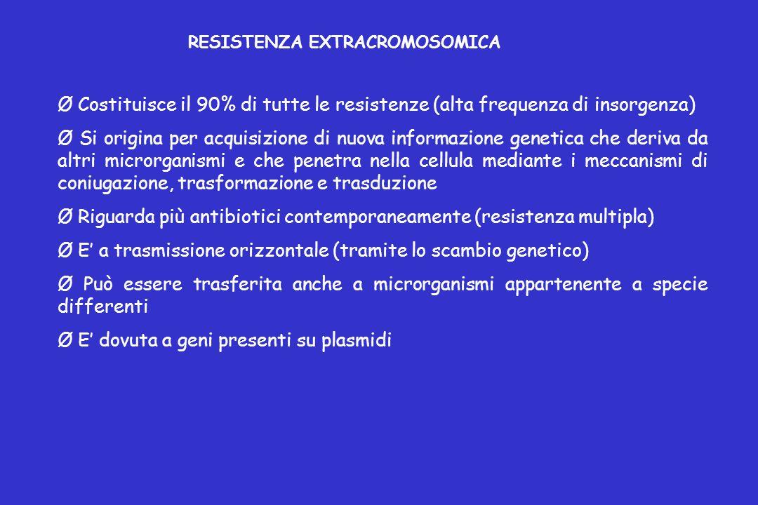 Ø Riguarda più antibiotici contemporaneamente (resistenza multipla)