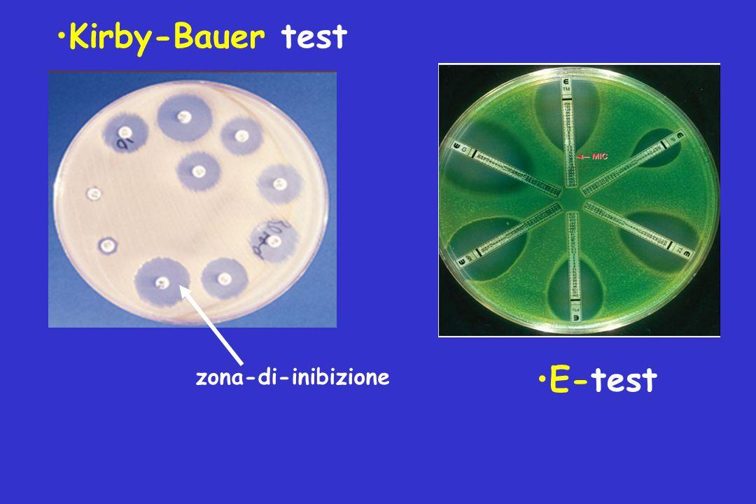 Kirby-Bauer test E-test zona-di-inibizione