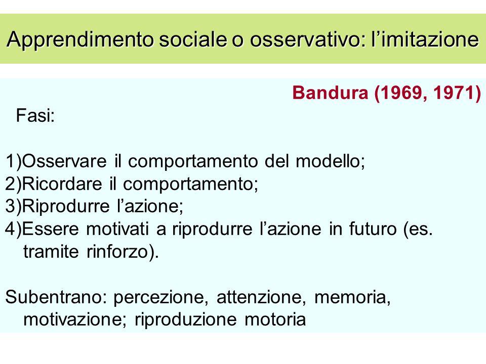 Apprendimento sociale o osservativo: l'imitazione