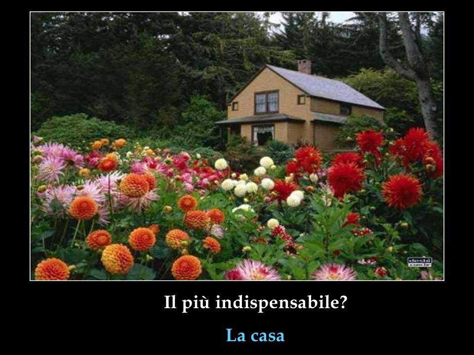 Il più indispensabile La casa