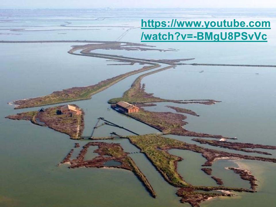 https://www.youtube.com/watch v=-BMgU8PSvVc
