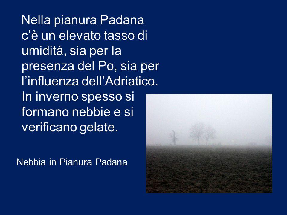 Nella pianura Padana c'è un elevato tasso di umidità, sia per la presenza del Po, sia per l'influenza dell'Adriatico. In inverno spesso si formano nebbie e si verificano gelate.