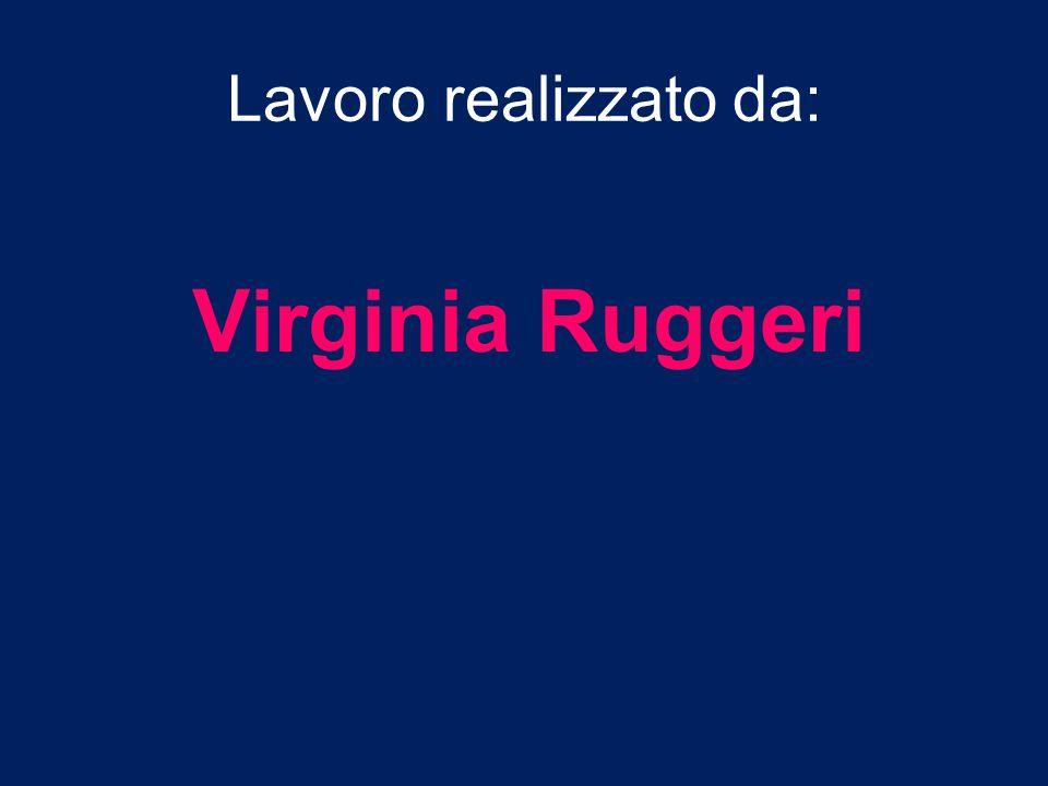 Lavoro realizzato da: Virginia Ruggeri