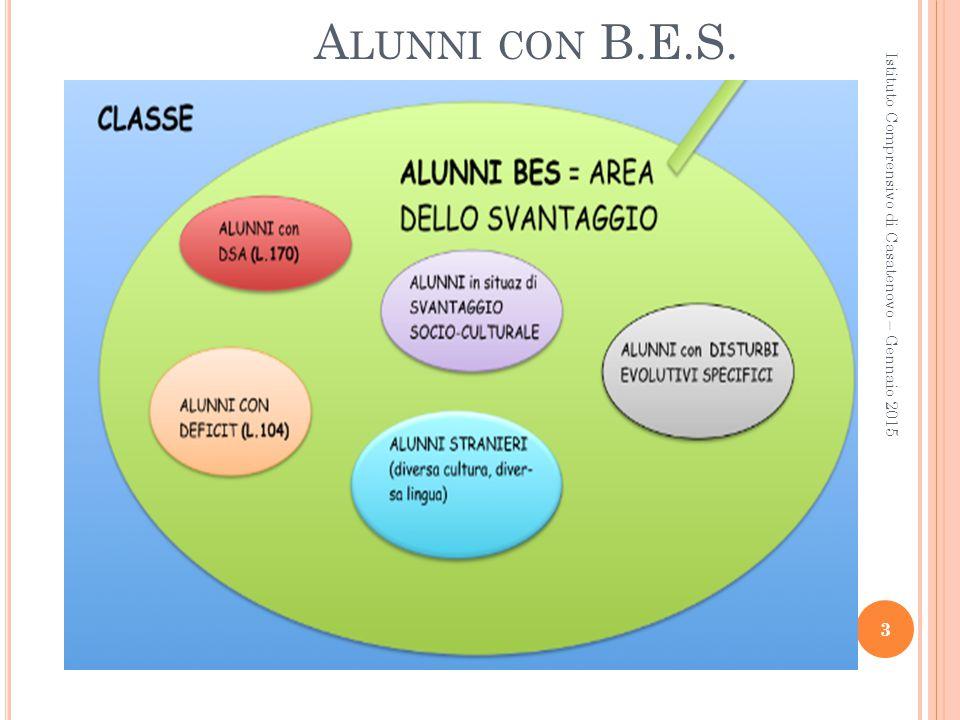 Alunni con B.E.S. Istituto Comprensivo di Casatenovo – Gennaio 2015