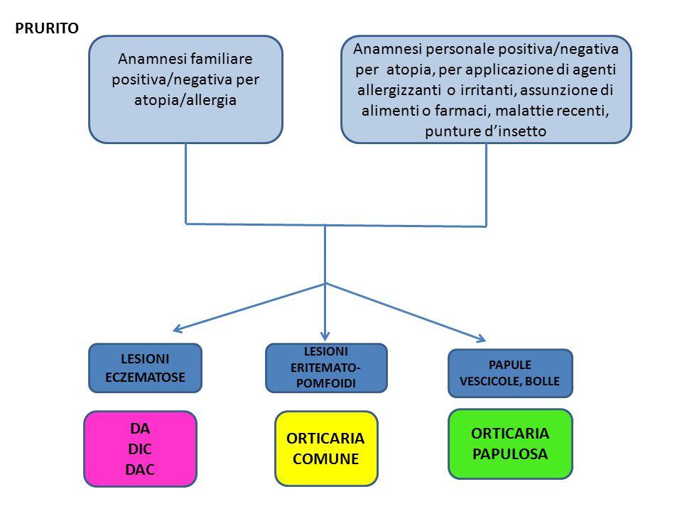 LESIONI ERITEMATO-POMFOIDI PAPULE VESCICOLE, BOLLE