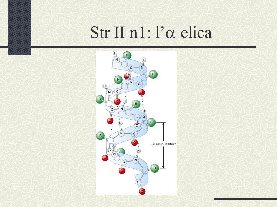 Str II n1: l'a elica