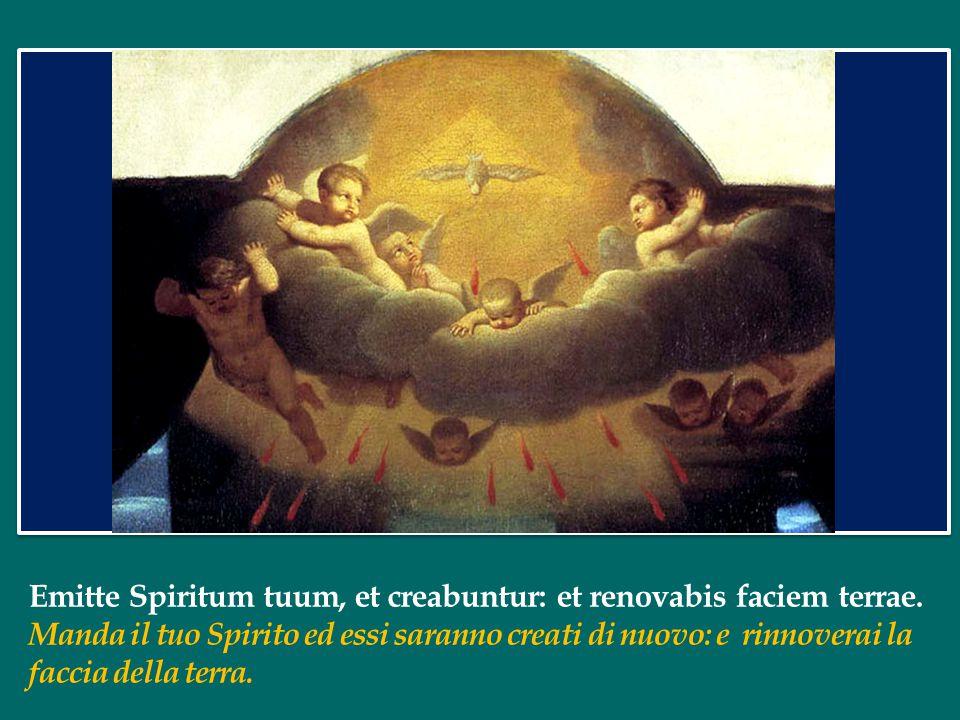 Emitte Spiritum tuum, et creabuntur: et renovabis faciem terrae.