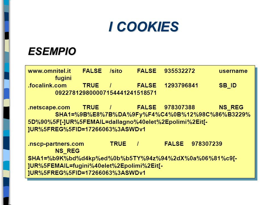 I COOKIES ESEMPIO. www.omnitel.it FALSE /sito FALSE 935532272 username fugini.