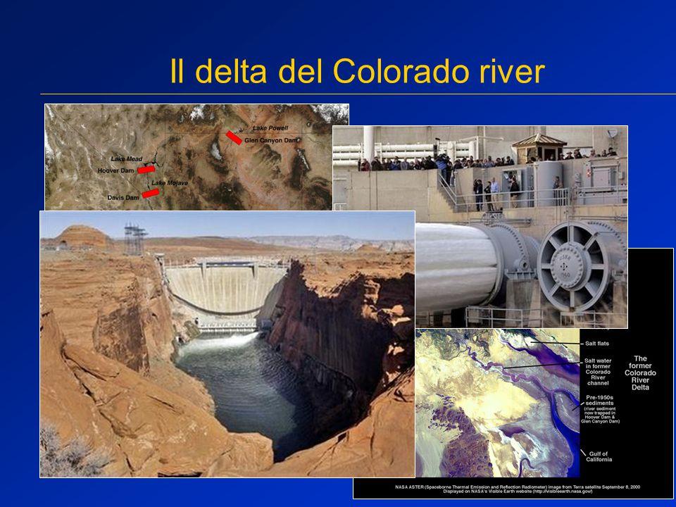 Il delta del Colorado river