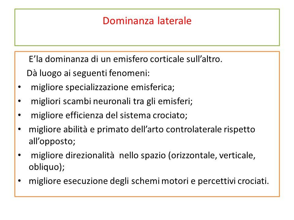 Dominanza laterale E'la dominanza di un emisfero corticale sull'altro.
