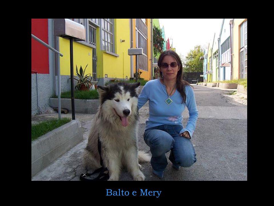 Balto e Mery