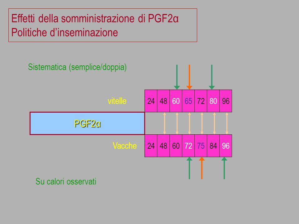 Effetti della somministrazione di PGF2α Politiche d'inseminazione