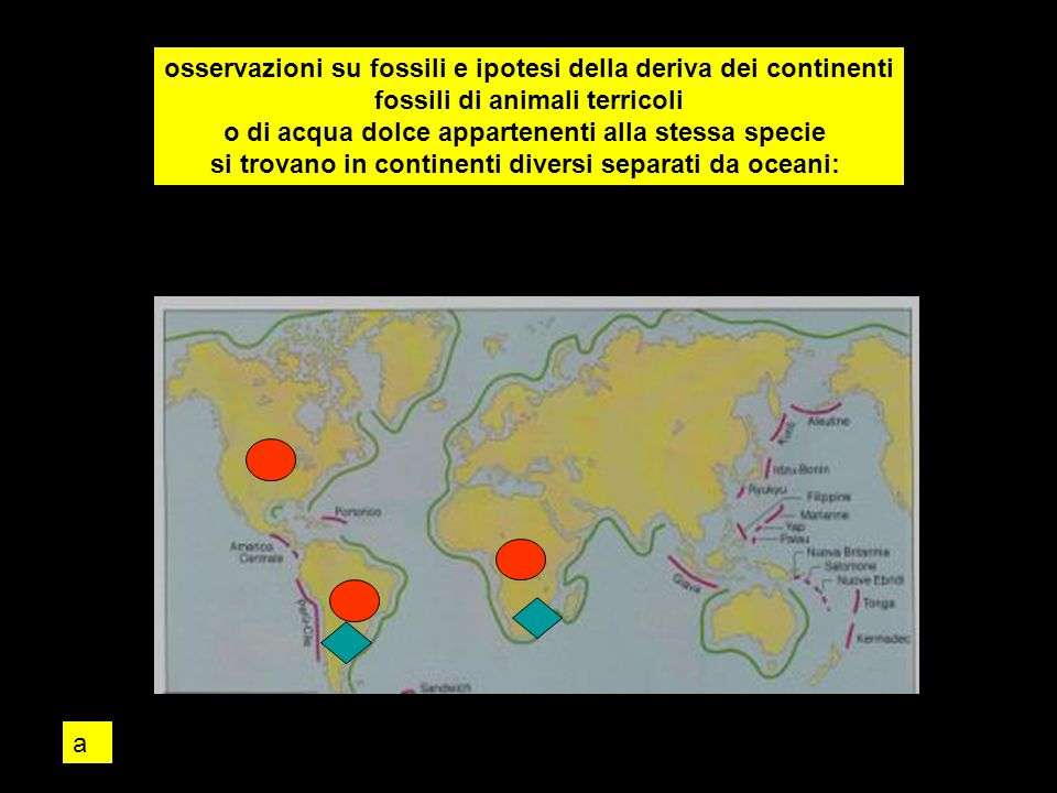 osservazioni su fossili e ipotesi della deriva dei continenti