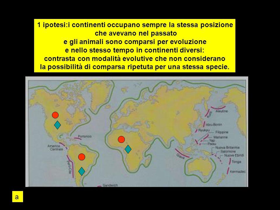 1 ipotesi:i continenti occupano sempre la stessa posizione