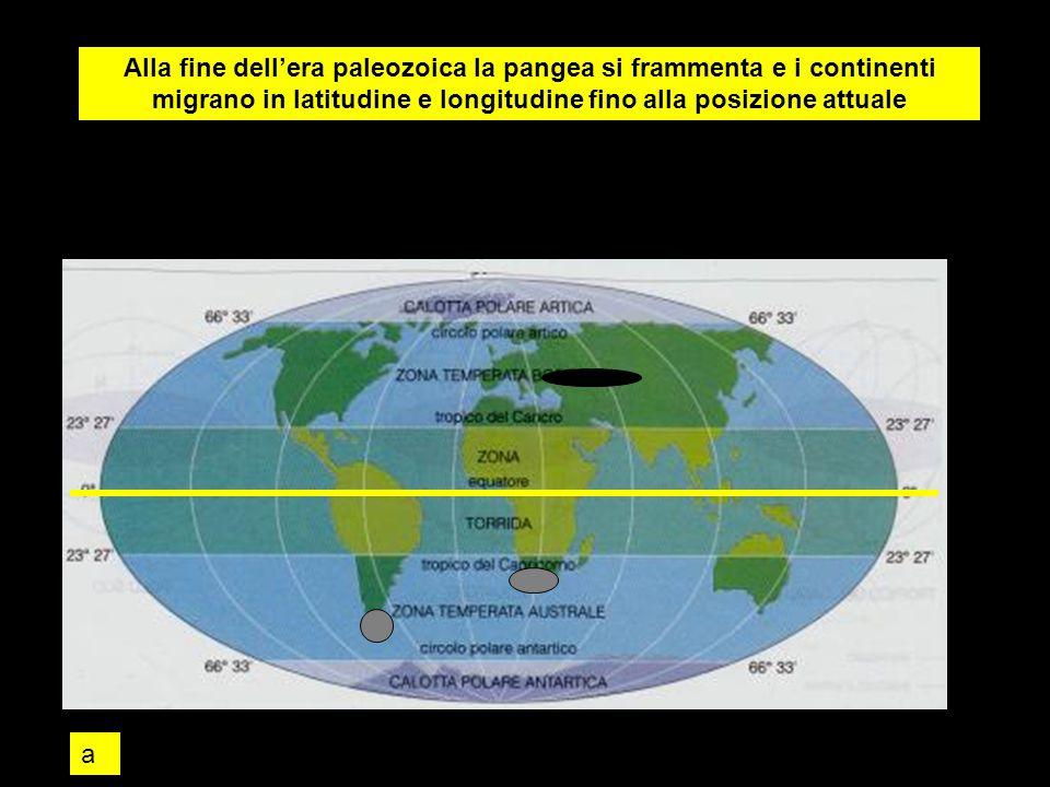 Alla fine dell'era paleozoica la pangea si frammenta e i continenti migrano in latitudine e longitudine fino alla posizione attuale