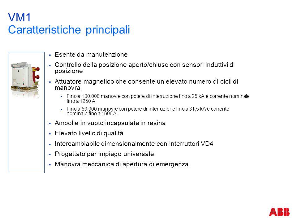 VM1 Caratteristiche principali