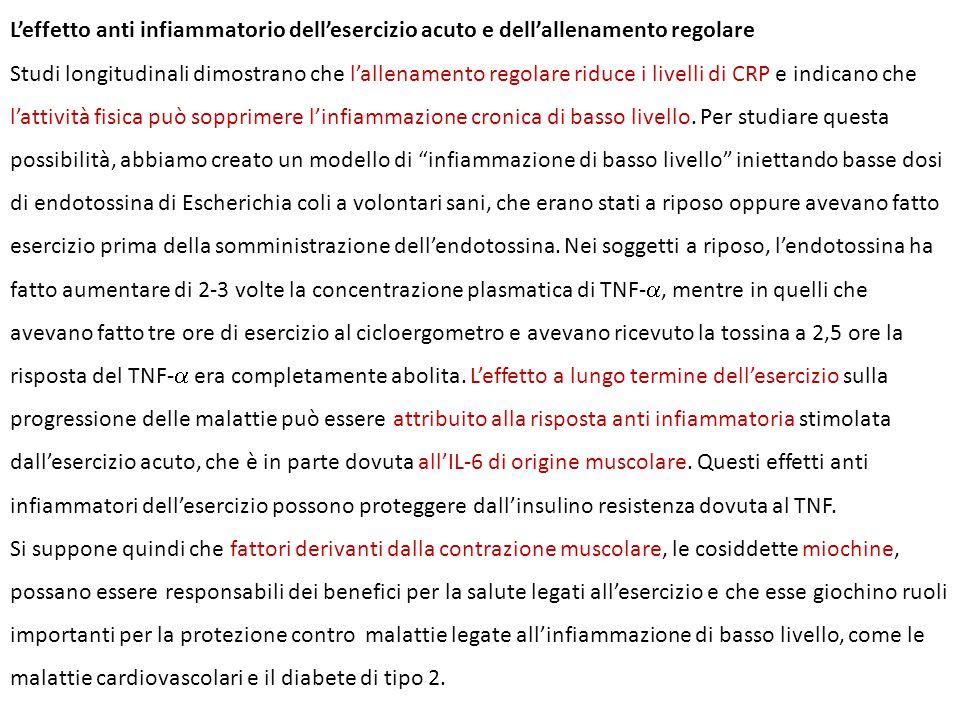 L'effetto anti infiammatorio dell'esercizio acuto e dell'allenamento regolare