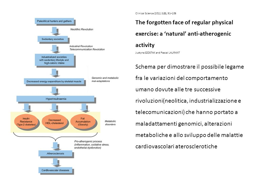 Clinical Science (2011) 121, 91–106 The forgotten face of regular physical exercise: a 'natural' anti-atherogenic activity.