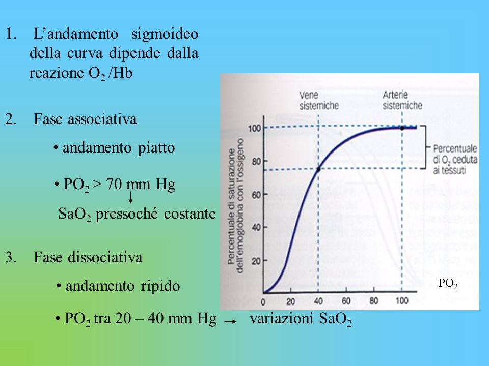PO2 tra 20 – 40 mm Hg variazioni SaO2