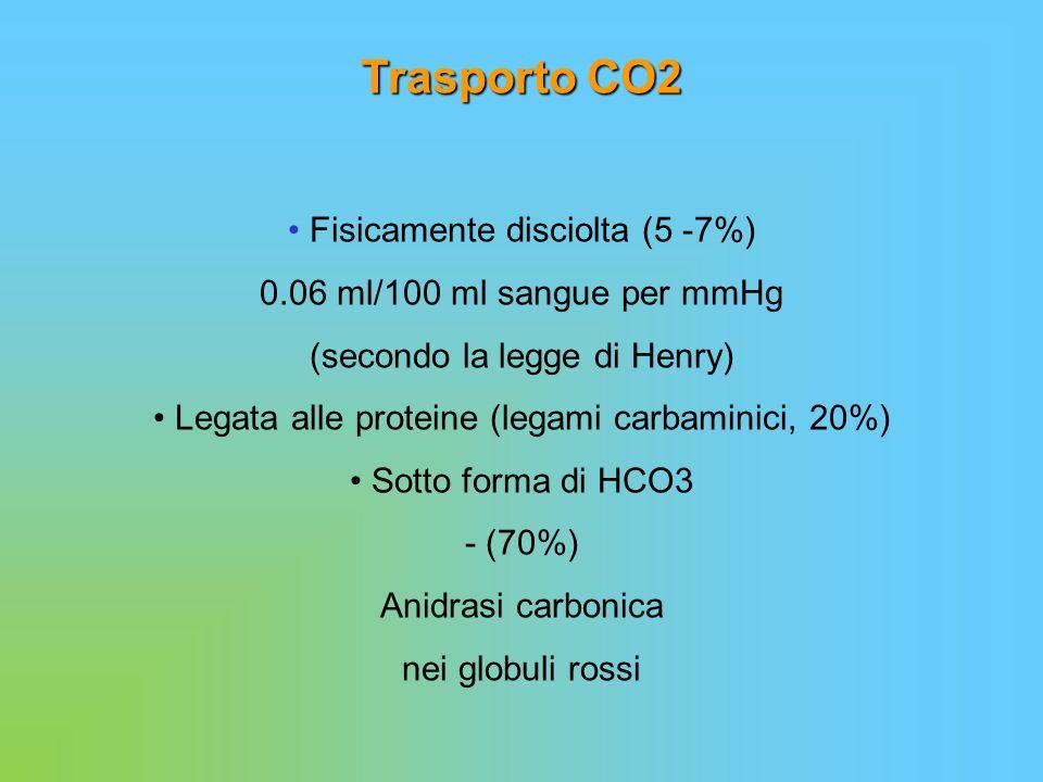 Trasporto CO2 • Fisicamente disciolta (5 -7%)