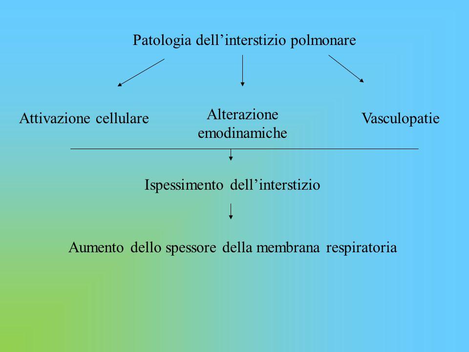 Patologia dell'interstizio polmonare