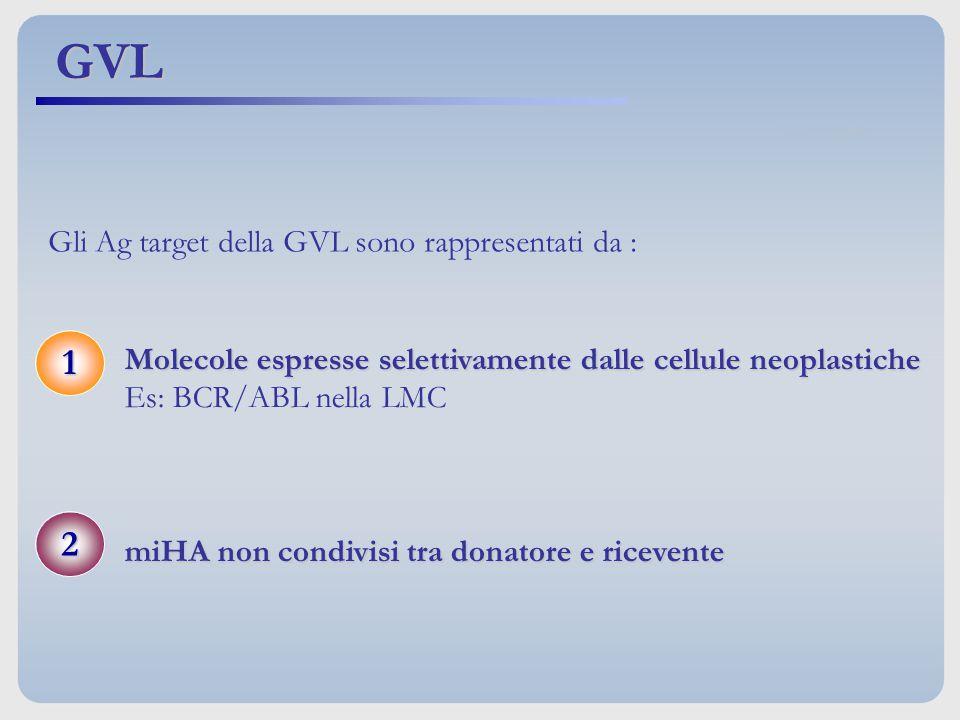 Gli Ag target della GVL sono rappresentati da :