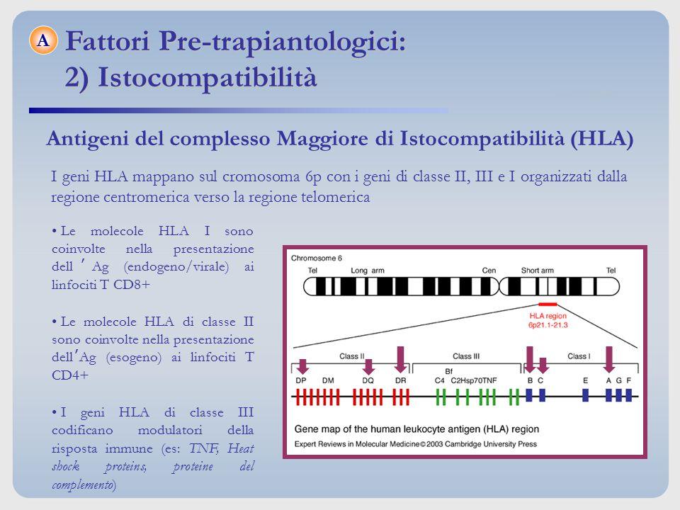 Fattori Pre-trapiantologici: 2) Istocompatibilità