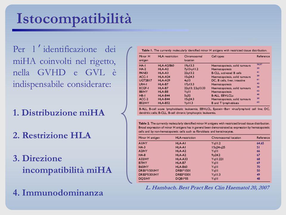 Istocompatibilità Per l'identificazione dei miHA coinvolti nel rigetto, nella GVHD e GVL è indispensabile considerare: