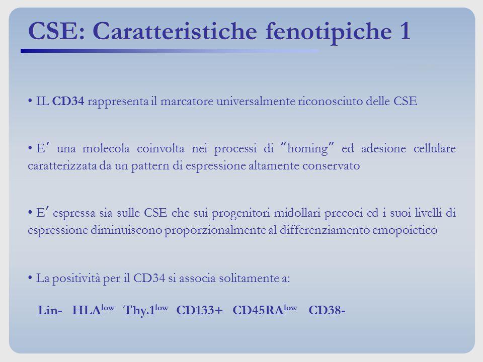 CSE: Caratteristiche fenotipiche 1