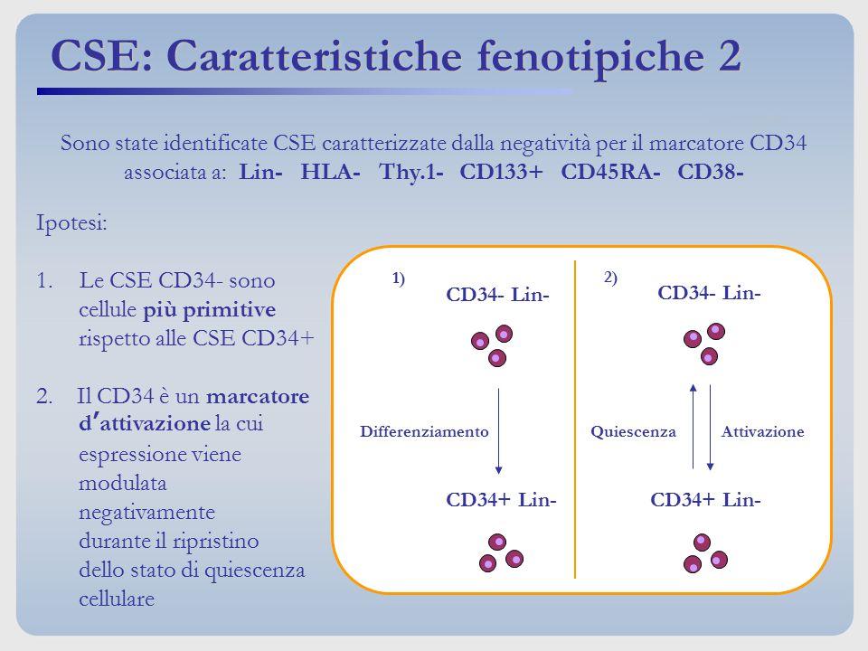 CSE: Caratteristiche fenotipiche 2