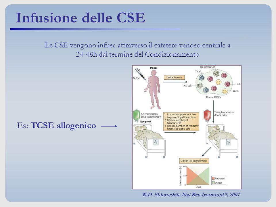 Infusione delle CSE Es: TCSE allogenico