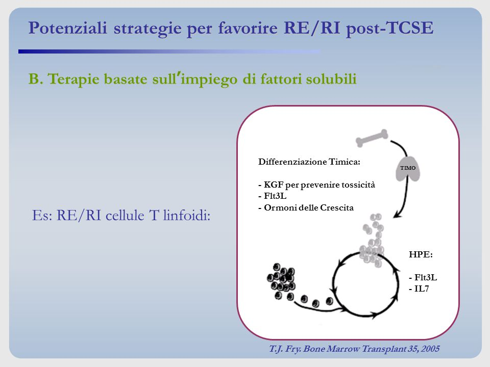 Potenziali strategie per favorire RE/RI post-TCSE