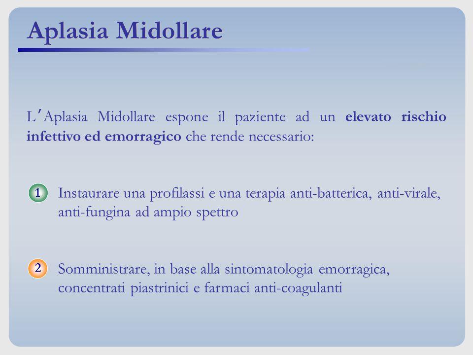 Aplasia Midollare L'Aplasia Midollare espone il paziente ad un elevato rischio infettivo ed emorragico che rende necessario: