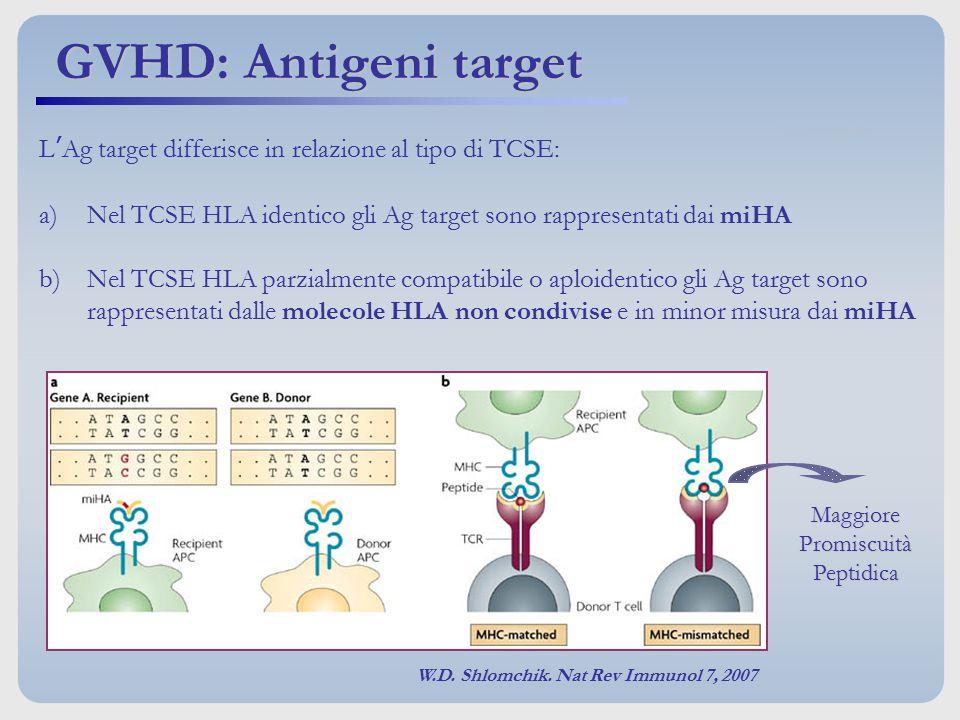 GVHD: Antigeni target L'Ag target differisce in relazione al tipo di TCSE: Nel TCSE HLA identico gli Ag target sono rappresentati dai miHA.