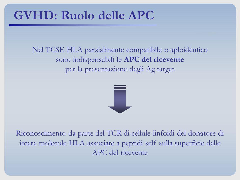GVHD: Ruolo delle APC Nel TCSE HLA parzialmente compatibile o aploidentico. sono indispensabili le APC del ricevente.