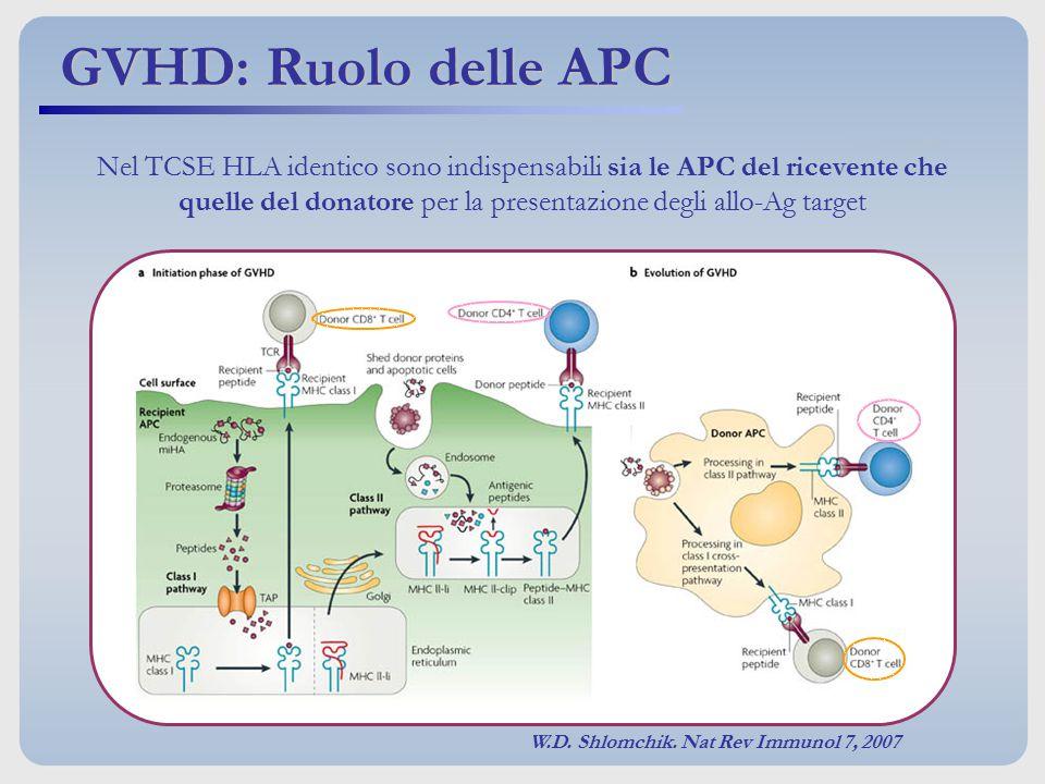 GVHD: Ruolo delle APC