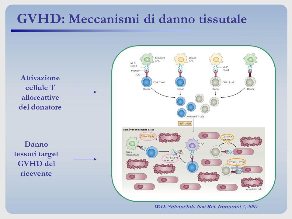 Attivazione cellule T alloreattive del donatore