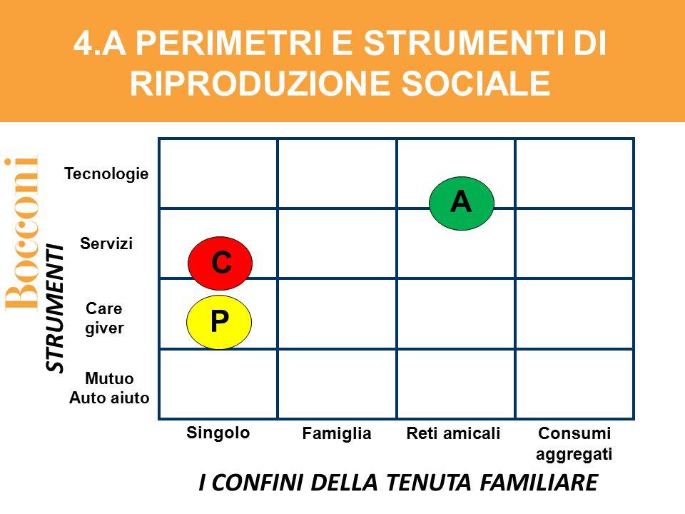4.A PERIMETRI E STRUMENTI DI RIPRODUZIONE SOCIALE