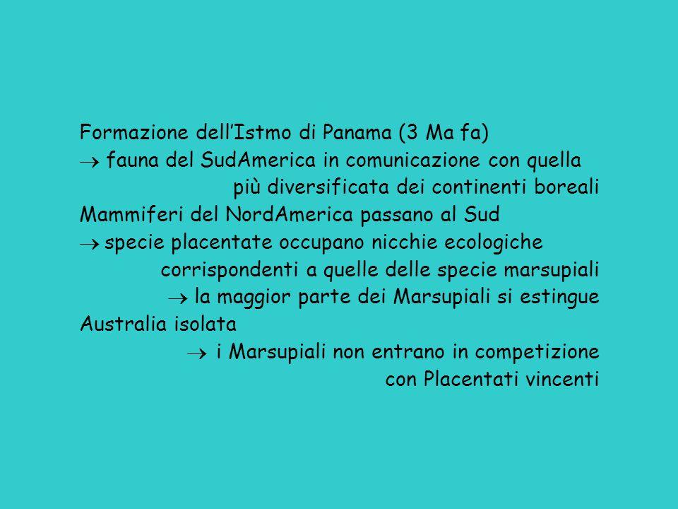 Formazione dell'Istmo di Panama (3 Ma fa)