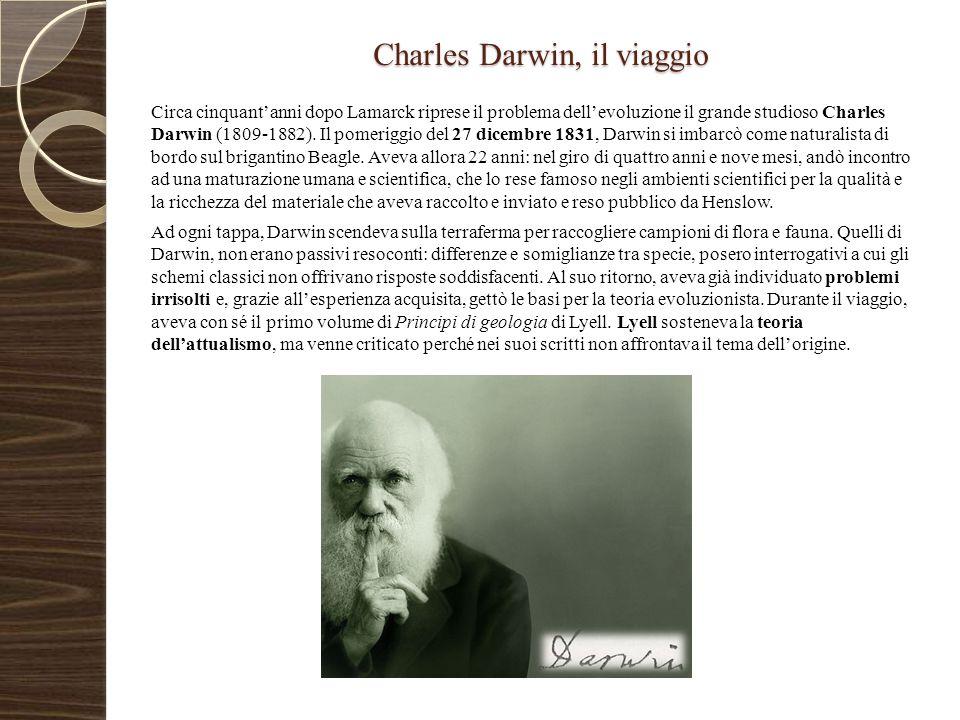 Charles Darwin, il viaggio