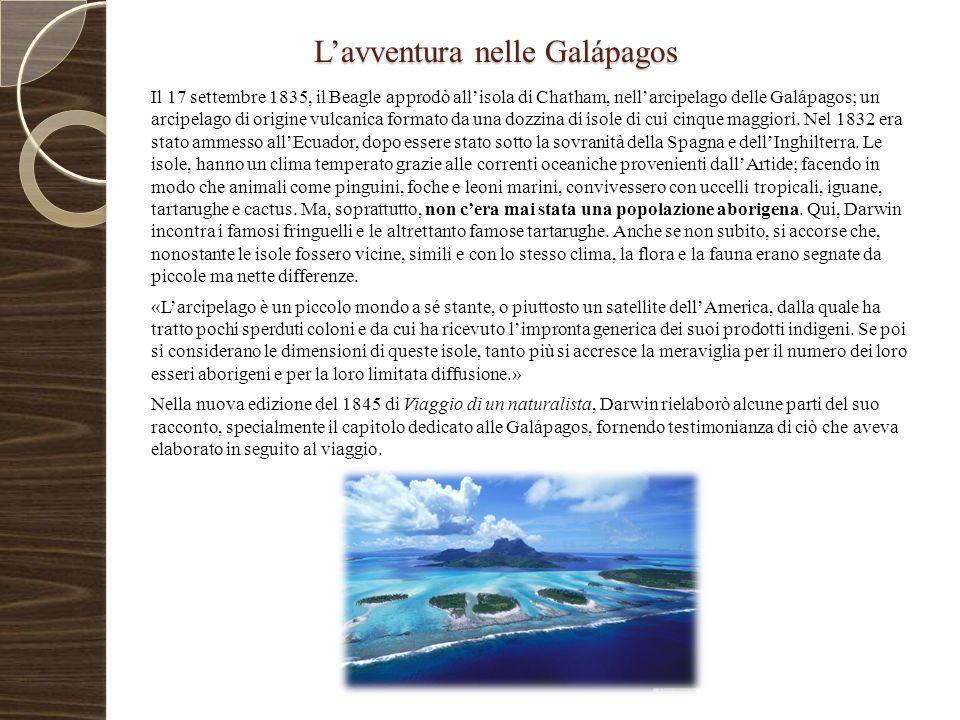 L'avventura nelle Galápagos