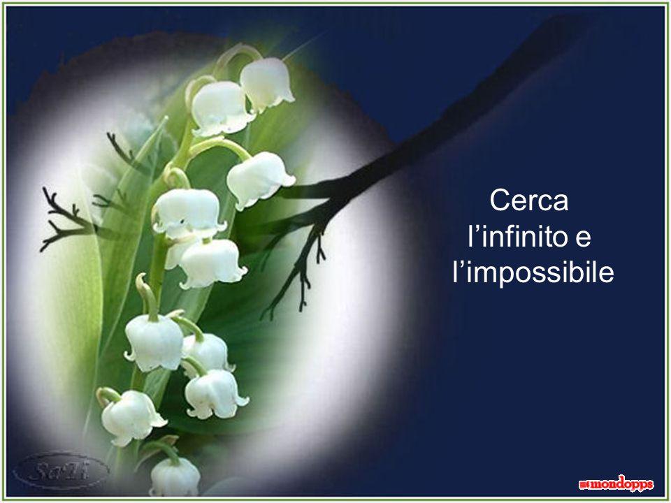 Cerca l'infinito e l'impossibile