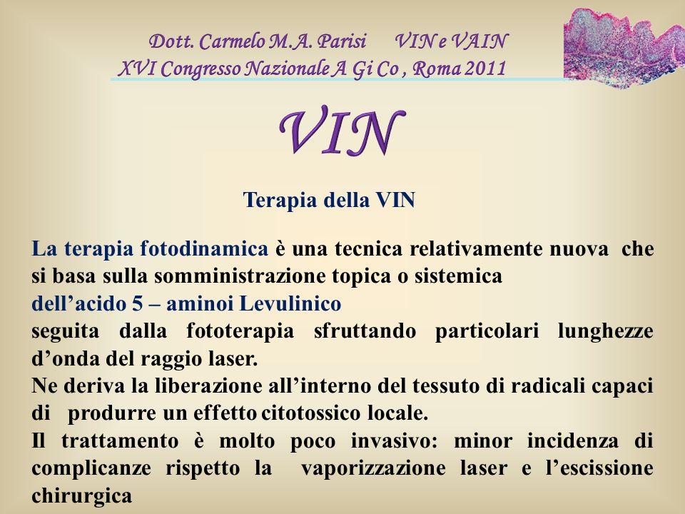 VIN Dott. Carmelo M.A. Parisi VIN e VAIN