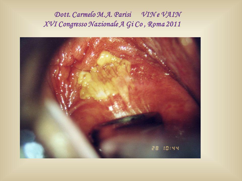 Dott. Carmelo M.A. Parisi VIN e VAIN
