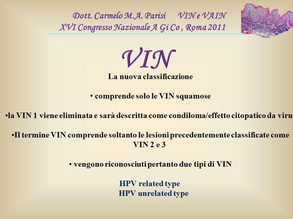 La nuova classificazione vengono riconosciuti pertanto due tipi di VIN