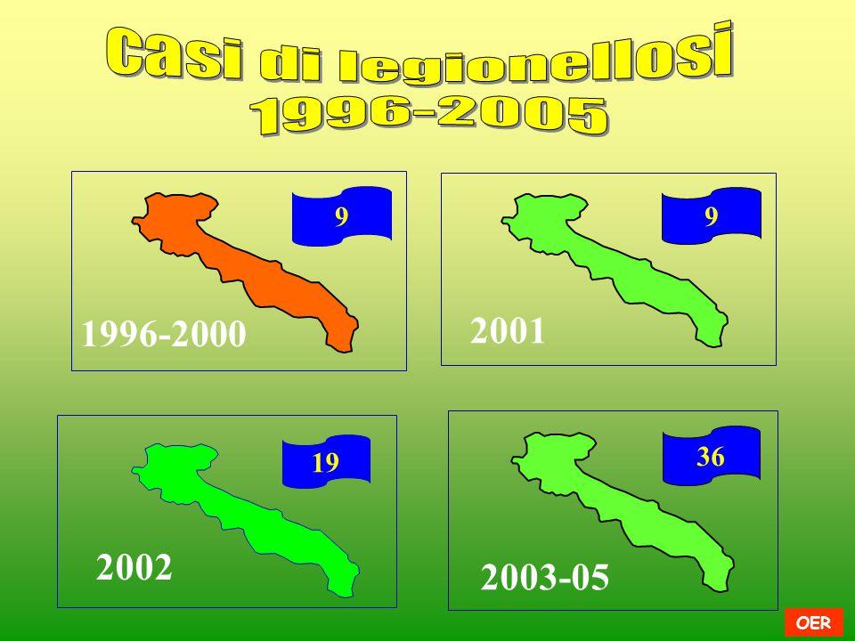 2001 1996-2000 2002 2003-05 casi di legionellosi 1996-2005 9 9 36 19