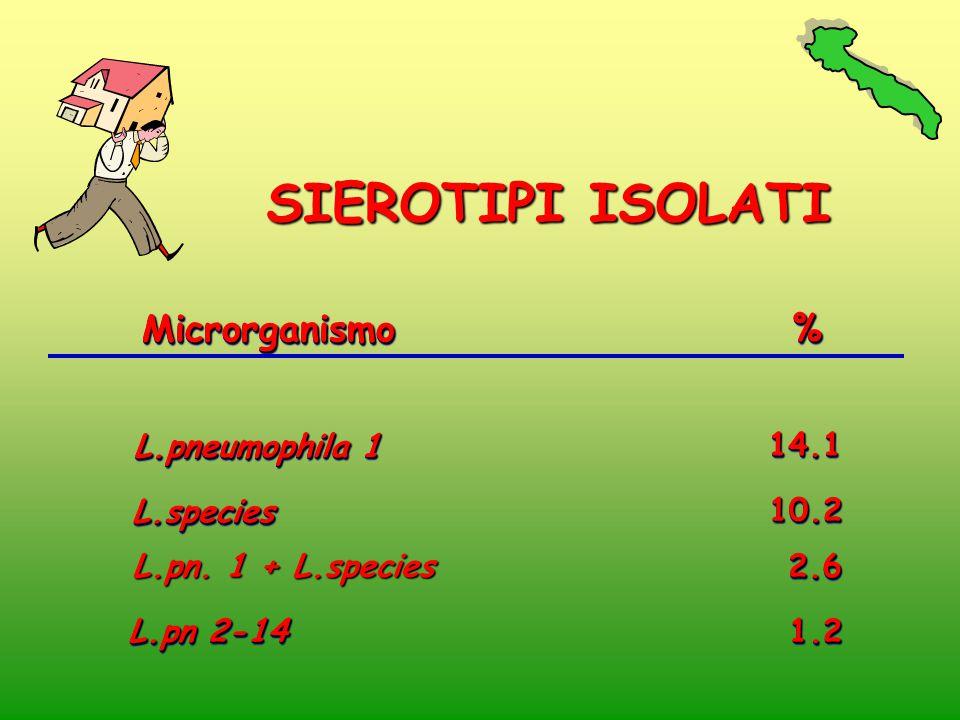 SIEROTIPI ISOLATI Microrganismo % L.pneumophila 1 14.1 L.species 10.2