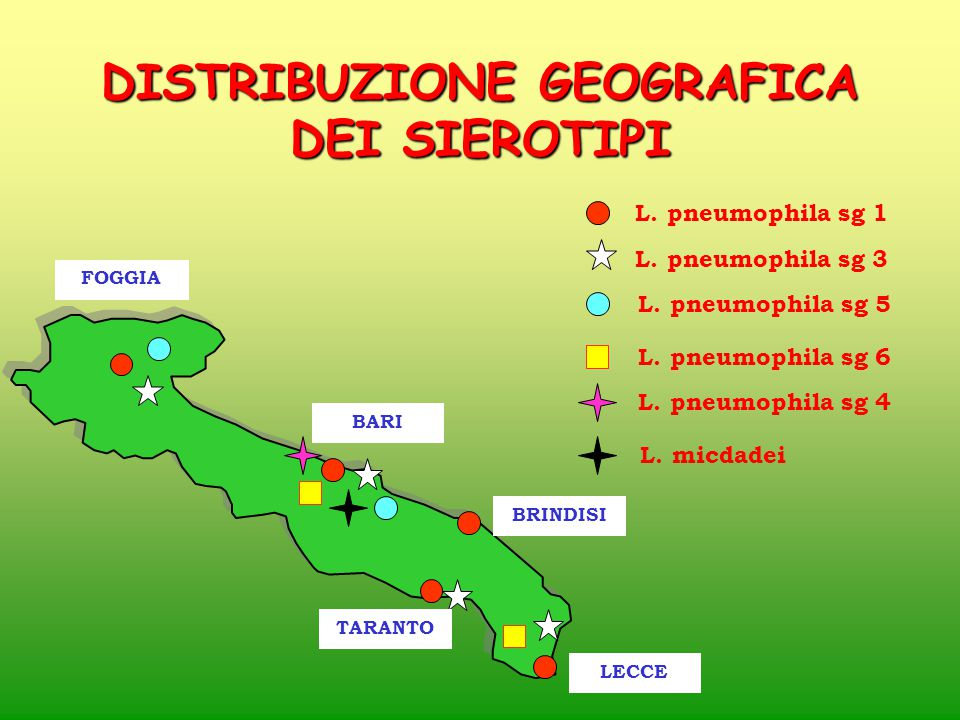 DISTRIBUZIONE GEOGRAFICA DEI SIEROTIPI
